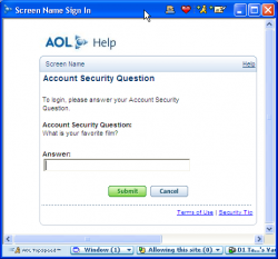 AIM security-question